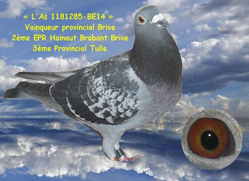 3eme as pigeon canion sobkowiak