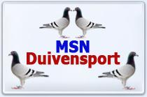 Amateur Msn Duivensport Août 2015