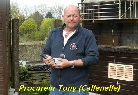 Procureur tony