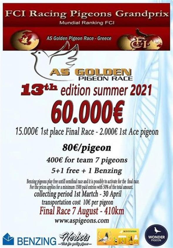 334152 as golden pigeon race thumbm